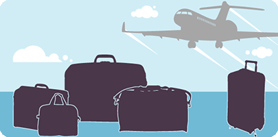 Initiative Banner of the Air Transportation Baggage Rules Consultation