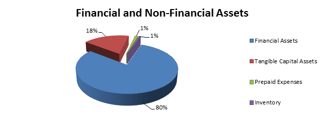 Total financial and non-financial assets