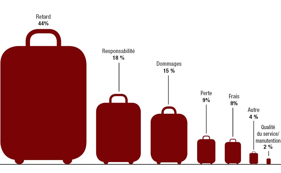 Figure 6 : Problèmes avec les bagages 2019-2020